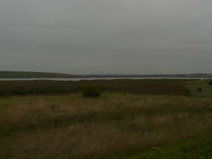 Erith Saltings