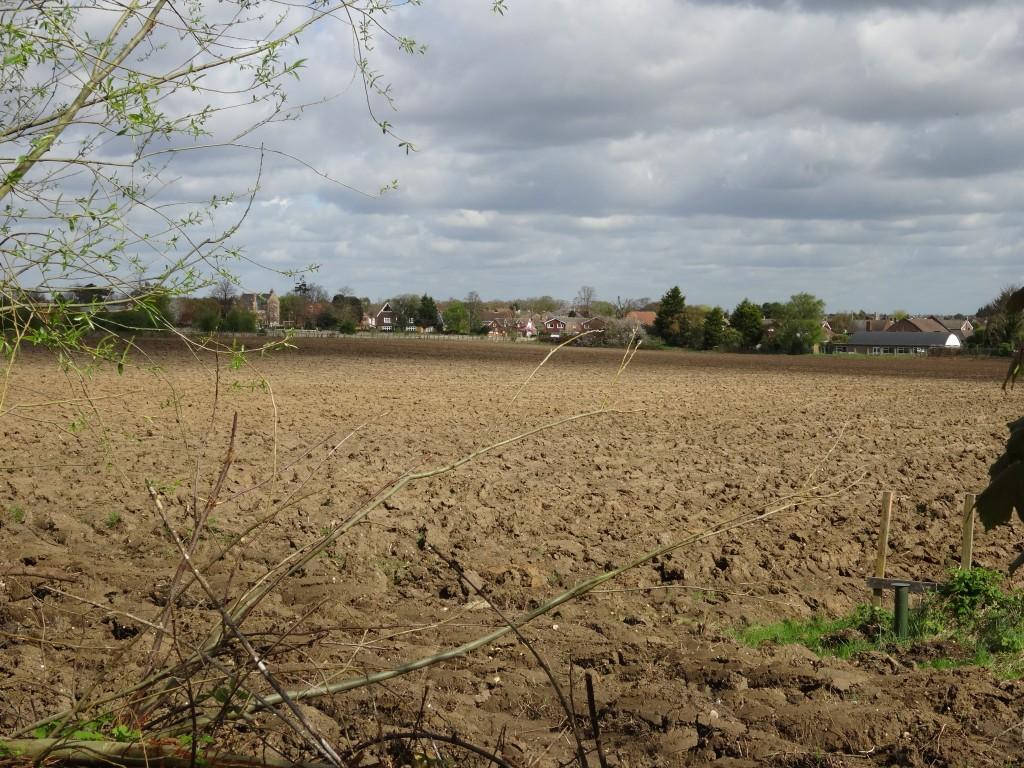 Coldblow Field, Baldwyn's Park, Bexley Village