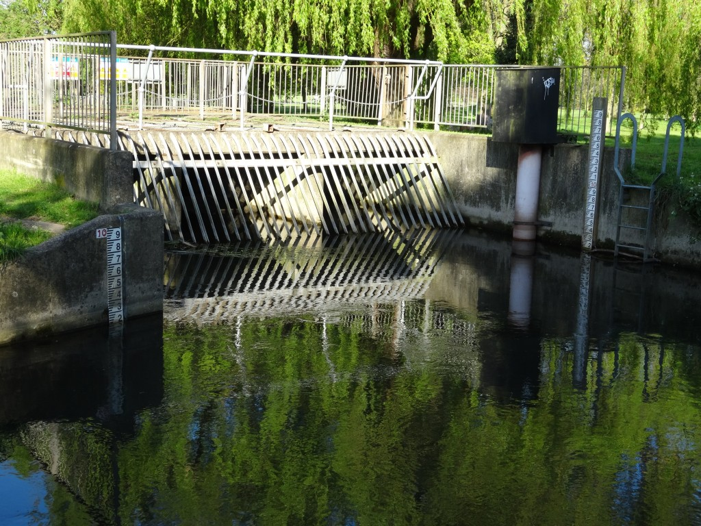 Overflow gate at Hall Place on Cray