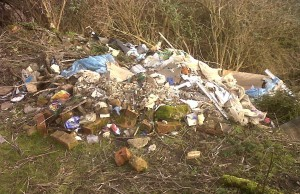 Fly-tipping at Thames Road Wetland on 25th January 2014