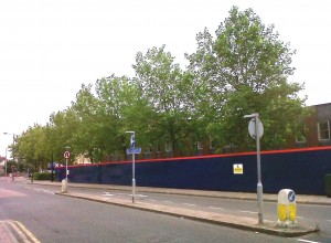 London Plane trees outside the old Council offices on the Broadway. Thanks to Tesco (and Bexley's apparent capitulation) these will go ..... Every little bit less greenery doesn't hep.