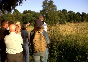 BNEF members at the Vicarage Road site listen to Ralph Todd, who informed us that he recorded the last Nightingale heard in Bexley in the since bulldozed scrub here back in 2010. The UK Nightingale population declined by 53% between 1995 and 2008