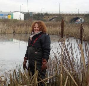 Jane Stout, re-elected as Chair of FotS, is pictured helping out at Thames Road Wetland.