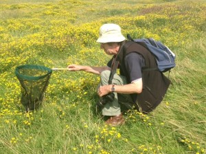 Martin Petchey is an amateur enthusiast who is producing valuable records and data about bees at Crossness Nature Reserve.