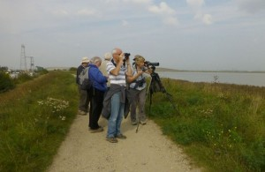 Crayford Marshes bird walk attendees look out across the Thames toward Rainham marshes