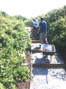 Volunteers making steps on a steep section of pathway.