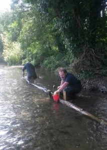 Thames21 volunteer and Shuttle Riverkeeper Duncan Devine fixes logs on the riverbed at Footscray Meadows to help vary flow rates, trap silt and allow marginal plants to establish along an otherwise shaded and eroded bank, in order to benefit wildlife.