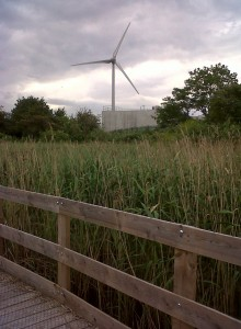Crossness sewage works turbine seen across  reedbed from the Protected Area boardwalk (Photo: Chris Rose)