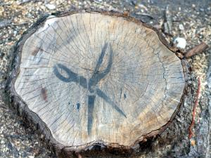 Scissors-Stenciled Stump (Baltimore, MD)