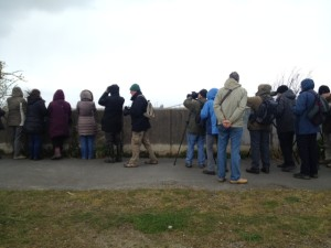 Attendees line the river wall to watch ducks and waders. (Photo: Karen Sutton)