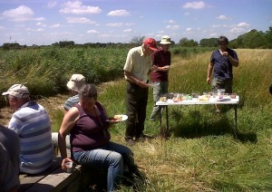 Lunchbreak. Rodney Burton (red cap, centre), the compiler of the 1993 Flora of the London area, took advantage of the meeting to gather plant records for an updated botanical atlas of the capital.