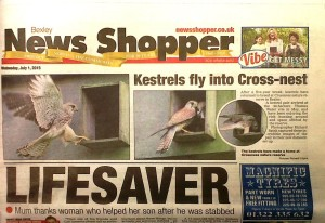 Kestrels are front page news in last week's 'Newsshopper'.