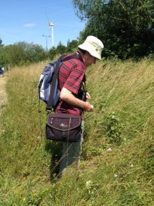Martin Petchey, who does Bee transect counts at Crossness.
