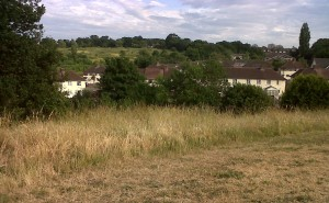 What price the Borough's open spaces as Bexley Council presses ahead with sell-off plans?