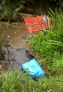 Some of the rubbish removed from the Cray by the volunteer team. (Photo: Chris Rose)