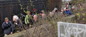 Attendees throng the sea wall to watch birds on the Thames foreshore (Martin Petchey)