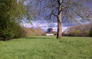 Half of Old Farm Park in Sidcup is for the chop after Bexley Council approved the sell-off proposal. (Photo: Chris Rose)