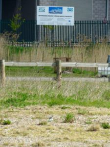 A Ring Plover on its nest can just be picked out near the bottom centre of this picture. Proximity to the Cory incinerator can be seen by the sign in the background. (Photo: Donna Zimmer)